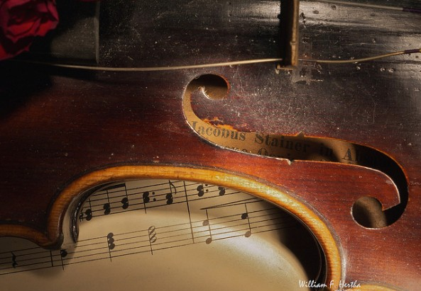 Violin - ©flickr.com/whertha