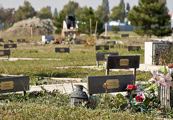Wiener Zentralfriedhof - ©Milagros Flener
