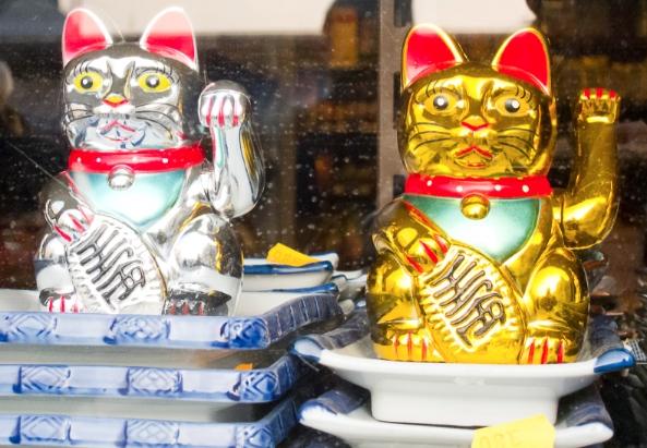 Chinesische Katze - ©Milagros-Flener