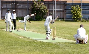 Cricket-Wien-Donaustadt - ©Milagros Martinez-Flener