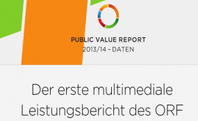 PubliValueReport2013